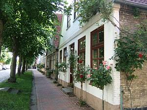 """Linden säumen die """"Lange Straße"""" in Arnis, an der auch das Rathaus liegt."""