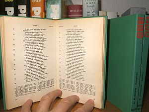 Die drei Bände beinhalten Dantes Göttliche Komödie – auf Italienisch.